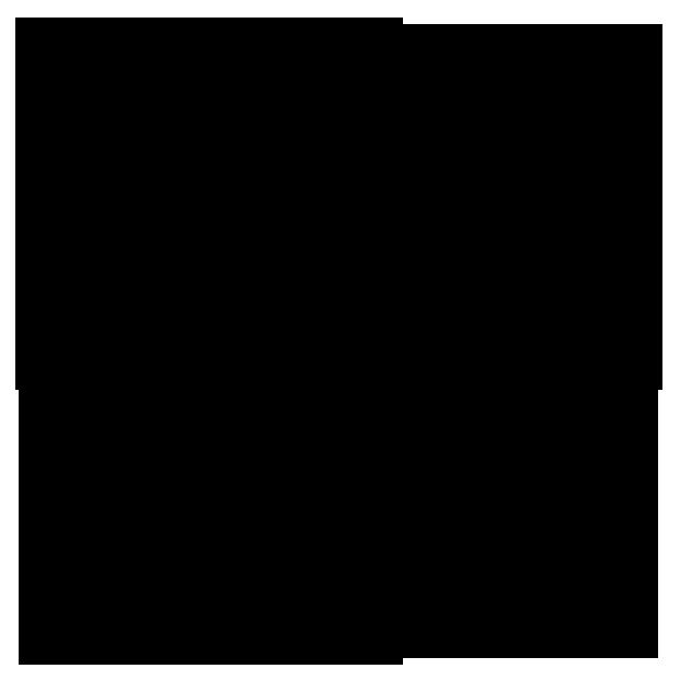 LACCIUGA